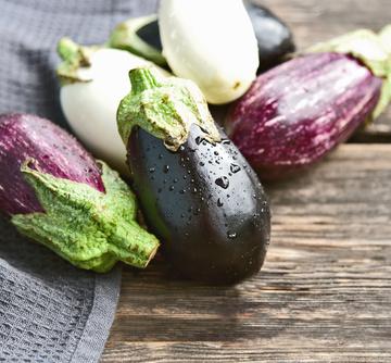 Trois variétés d'aubergines en circuit court à Toulouse