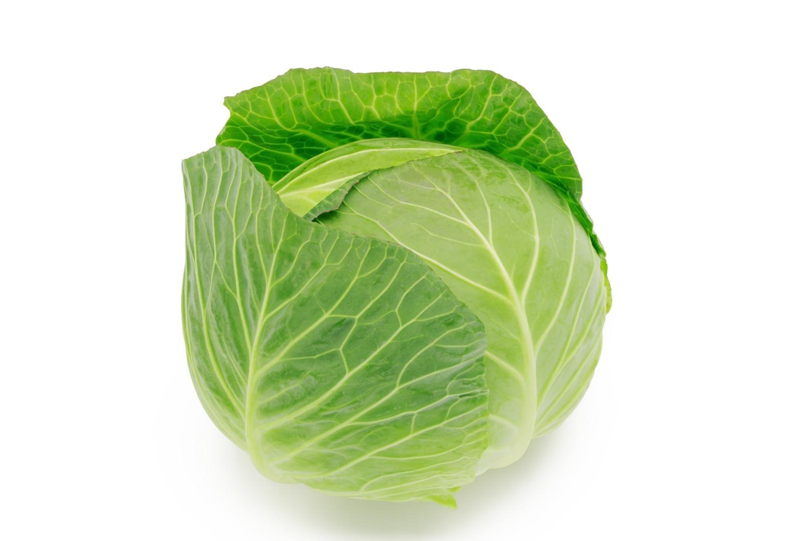 Choux plats verts