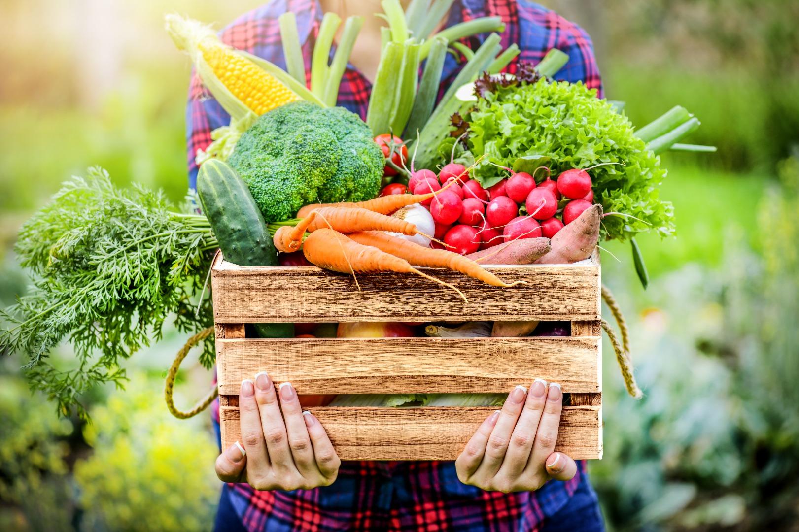 photo panier légumes.jpeg
